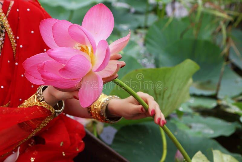 拿着莲花的女性手 免版税库存照片