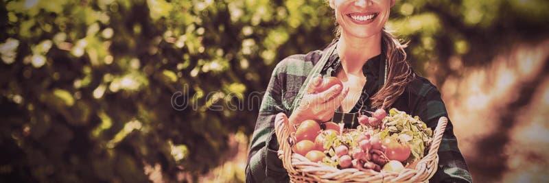 拿着菜的篮子愉快的女性农夫画象  库存图片