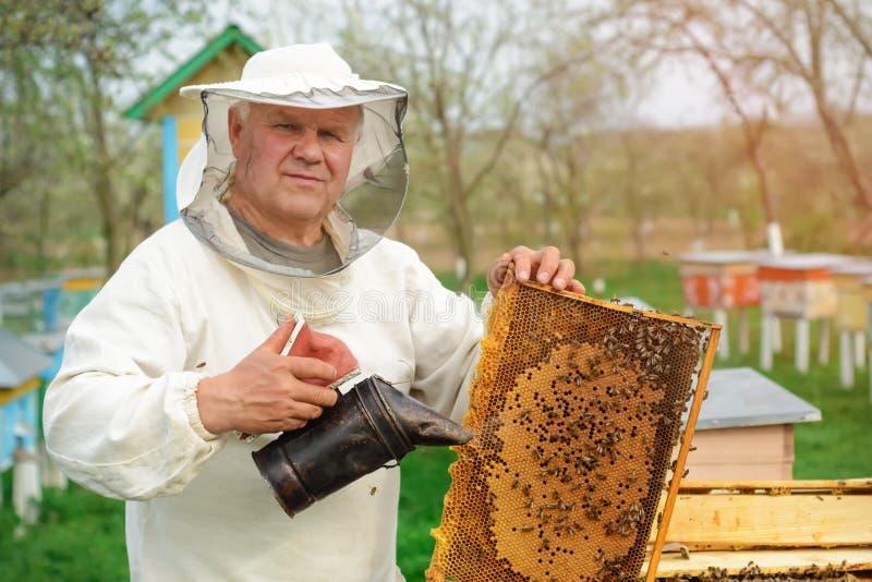 拿着蜂窝的蜂农有很多蜂 检查蜂窝框架的防护工作服的蜂农在蜂房 工作 图库摄影