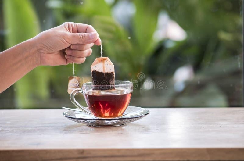 拿着袋子茶的手 库存图片