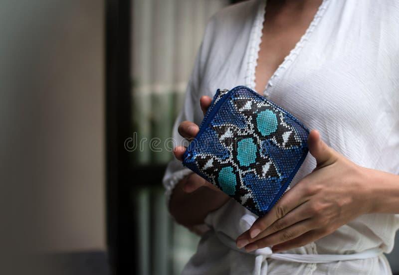 拿着豪华snakeskin Python钱包的时髦的女性手 辅助的时髦的女人 时髦的辅助部件,蓝色 库存图片
