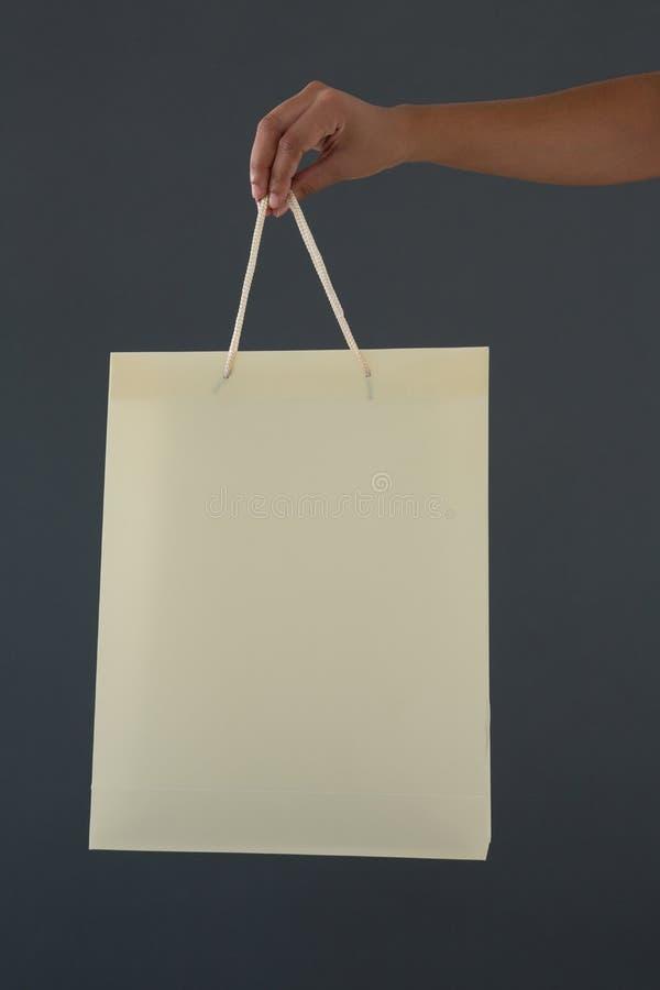 拿着购物袋的女性顾客的播种的手 免版税图库摄影