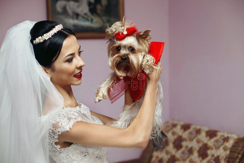 拿着逗人喜爱的一点pupp的白色礼服的美丽的深色的新娘 库存图片