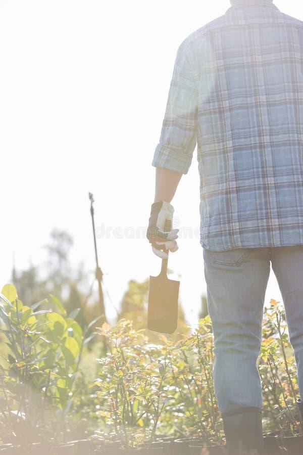 拿着铁锹的花匠背面图在植物托儿所 图库摄影