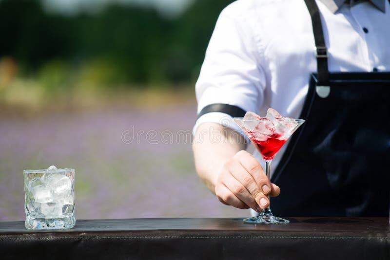 拿着马蒂尼鸡尾酒的特写镜头侍酒者玻璃与红色冷的cocktai 库存图片