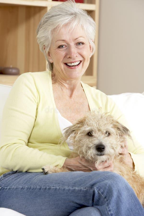 拿着高级沙发妇女的狗 库存图片