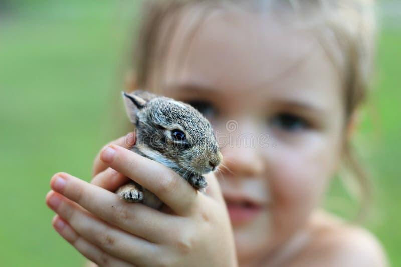 拿着婴孩兔宝宝的手 图库摄影