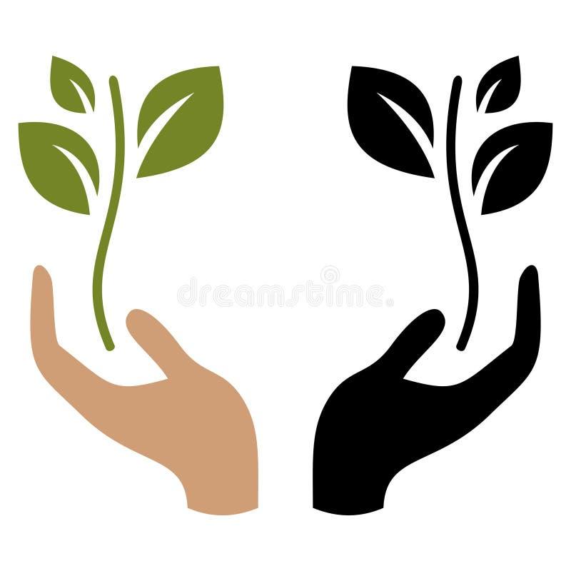 拿着年幼植物的手 向量例证
