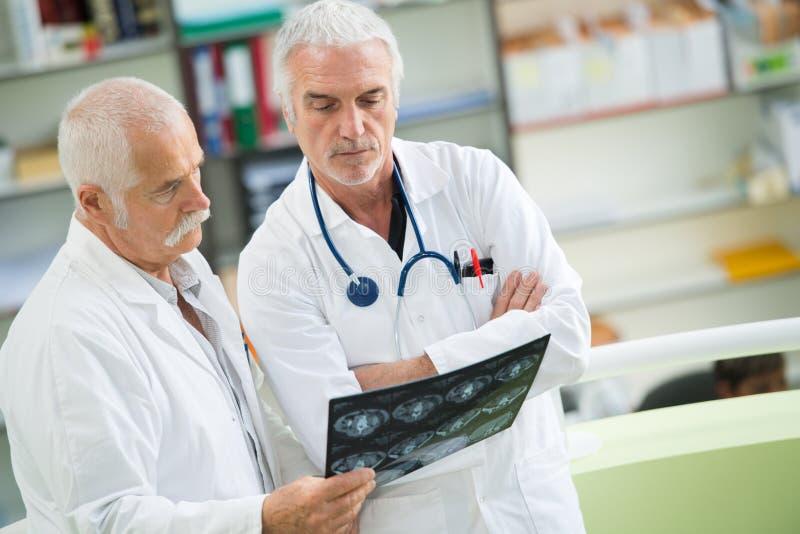 拿着X-射线的医生在医疗办公室 库存图片