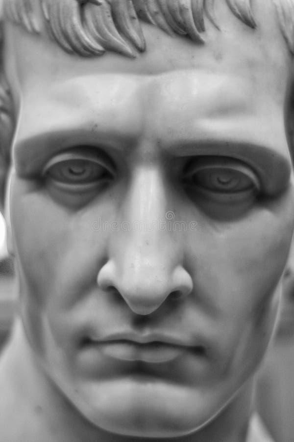 拿破仑胸象  图库摄影