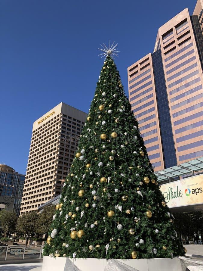 持久圣诞节在街市的菲尼斯, AZ 库存图片
