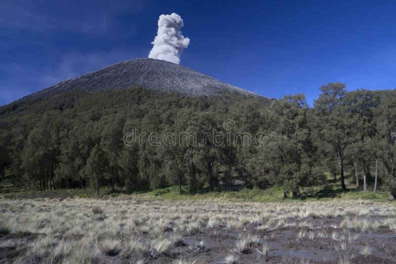 挂接Semeru,在Java,印度尼西亚的一个抽烟的火山 库存照片