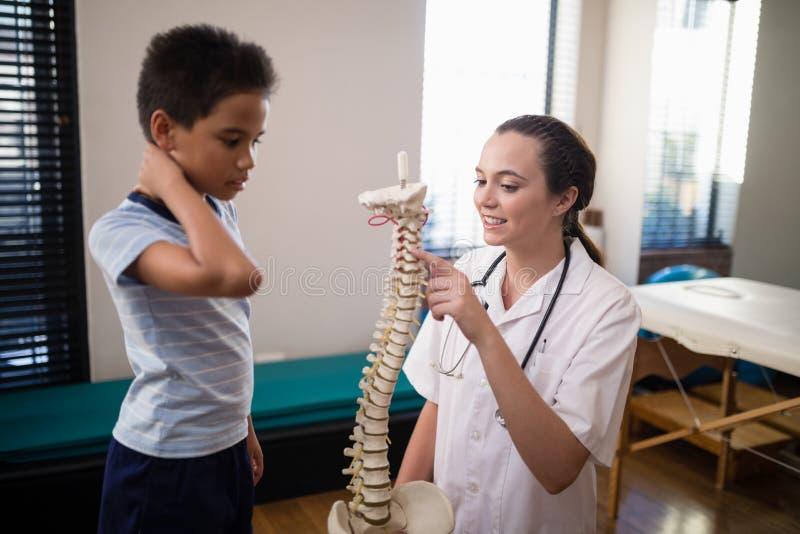 指向人为脊椎的女性治疗师,当解释对男孩时 库存照片