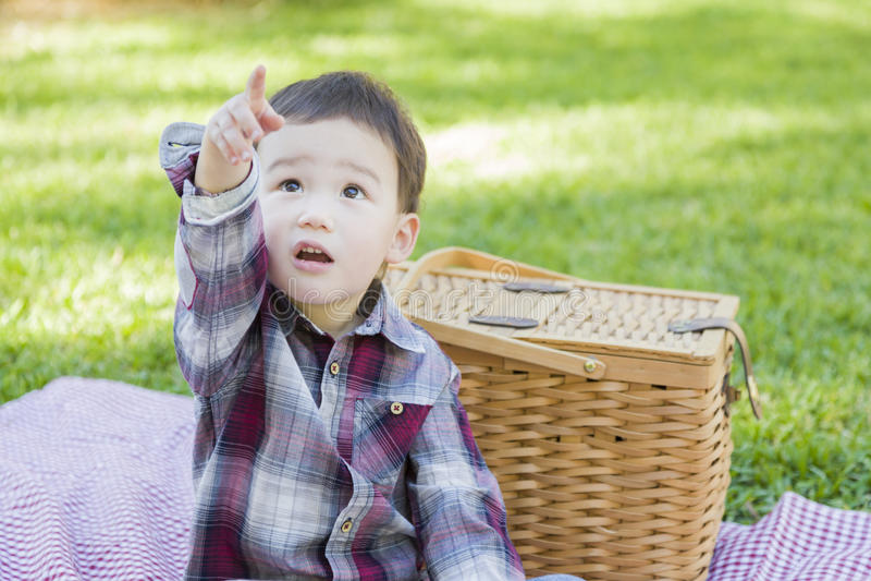 指向坐在公园的混合的族种小孩在野餐篮子附近 免版税库存照片