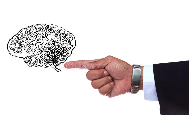 指向聪明的脑子的手 库存照片