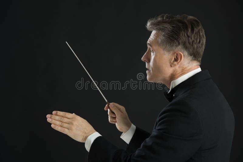 指挥与他的警棒的公管弦乐队指挥 库存照片