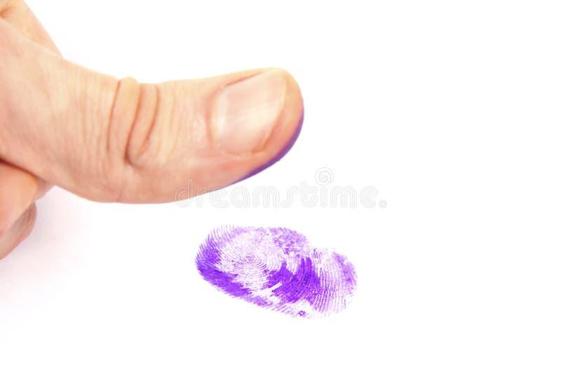 指纹略图 免版税库存照片