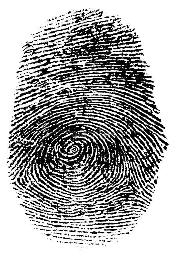 指纹 皇族释放例证