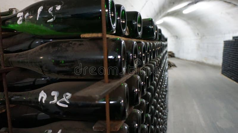 按传统方法老化香槟的酒窖 免版税库存照片