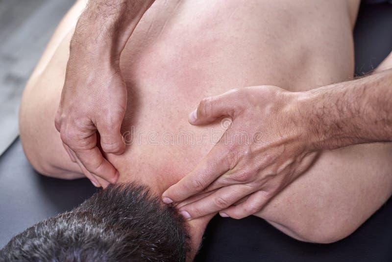 给后面按摩的生理治疗师 按摩脊柱治疗者,整骨疗法,手工疗法,针压法 免版税图库摄影