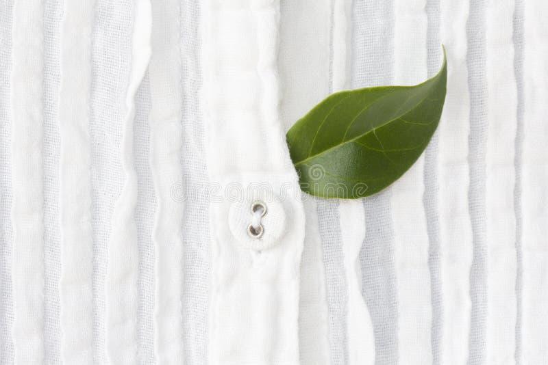 按钮和绿色叶子在白色衬衣 免版税图库摄影