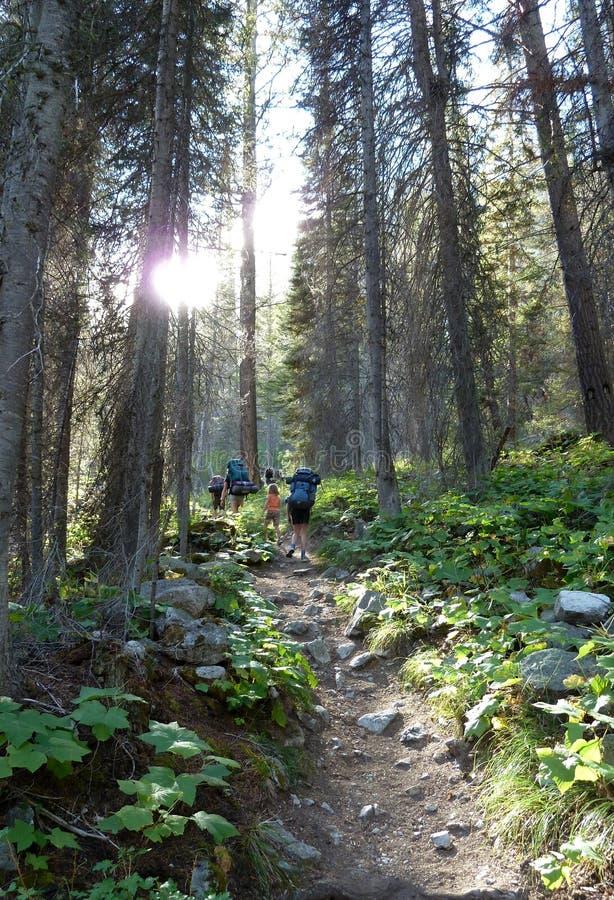 挑运沿在爱达荷的锯齿山的一串足迹 库存照片
