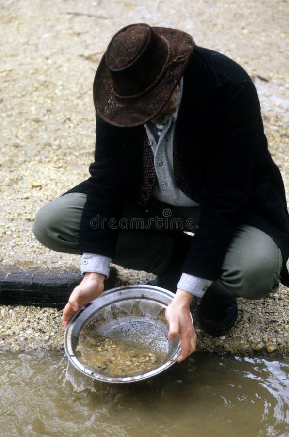 挖掘机的金子 免版税库存照片