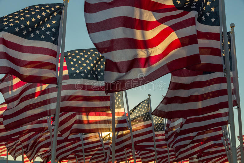 挥动在日落的美国国旗 免版税库存图片