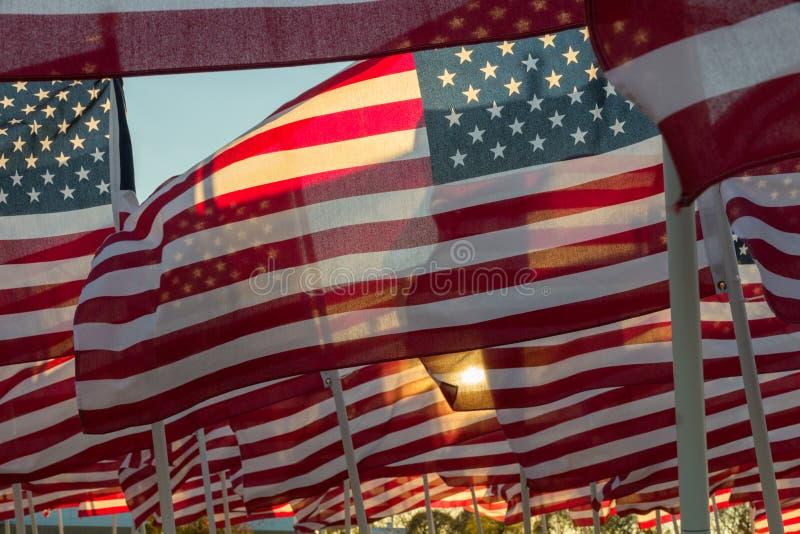 挥动在日落的美国国旗 库存图片