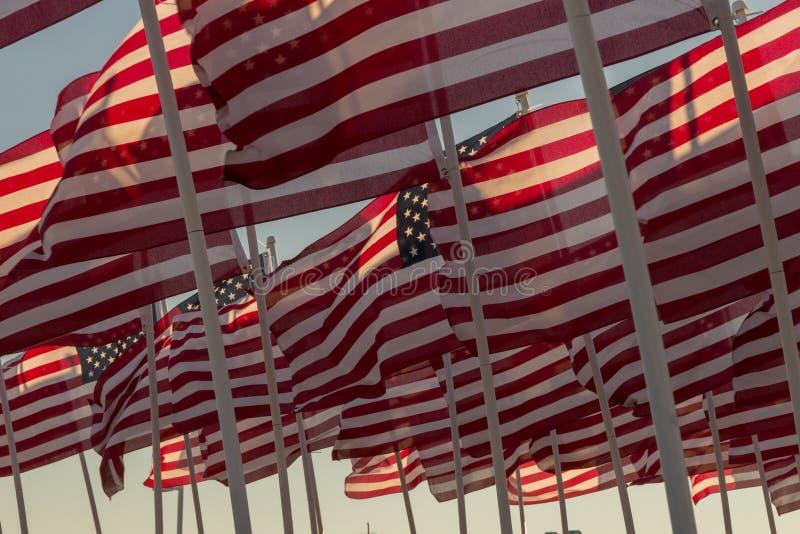 挥动在日落的美国国旗 库存照片