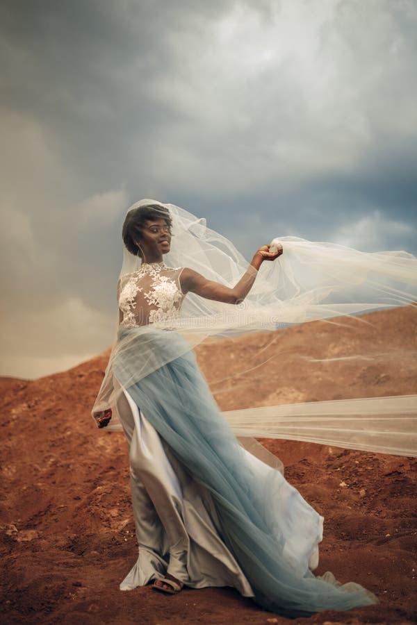 挥动的长的婚礼礼服和新娘面纱黑人新娘在美好的风景背景站立  免版税库存图片