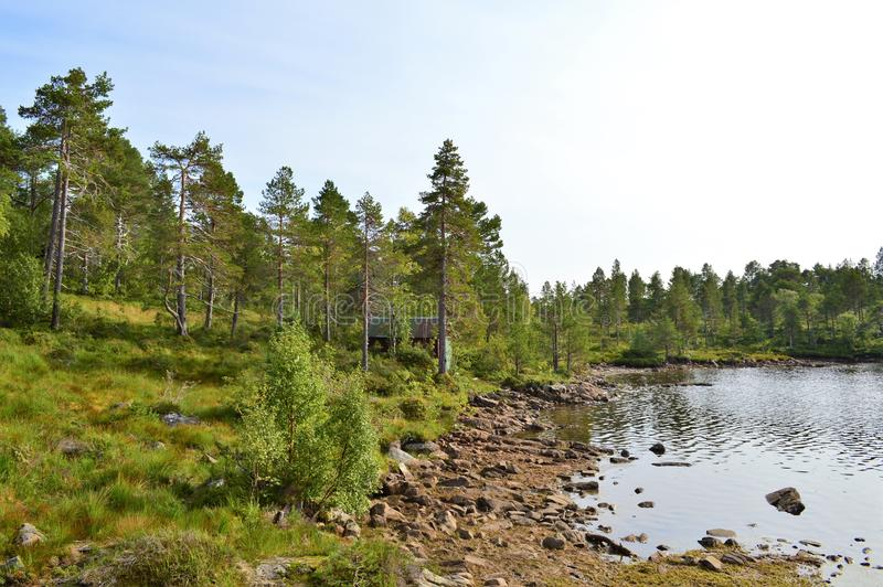 挪威乡下 图库摄影