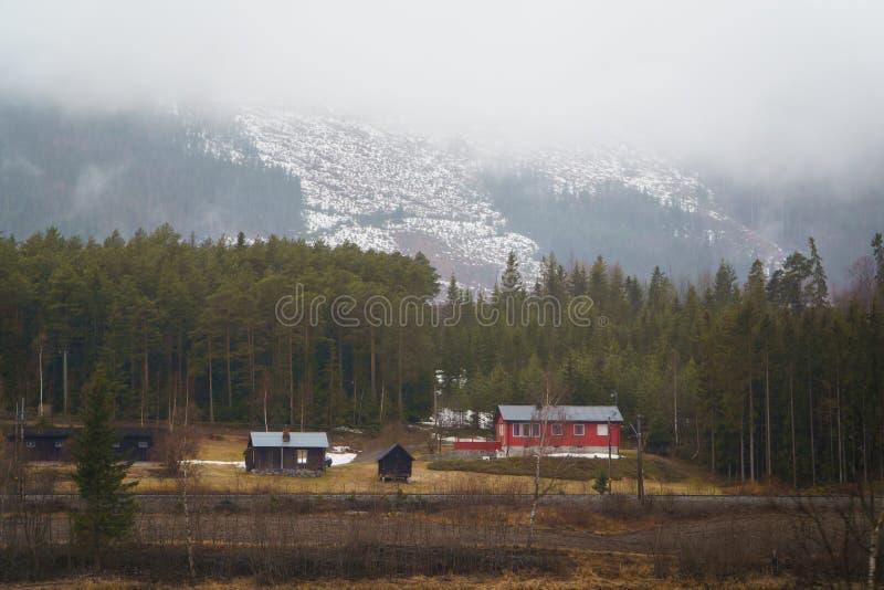 挪威春天风景,挪威乡下 在山附近的经典木房子 库存图片