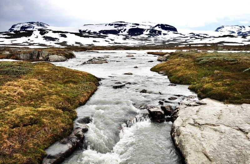 挪威洪流 库存照片