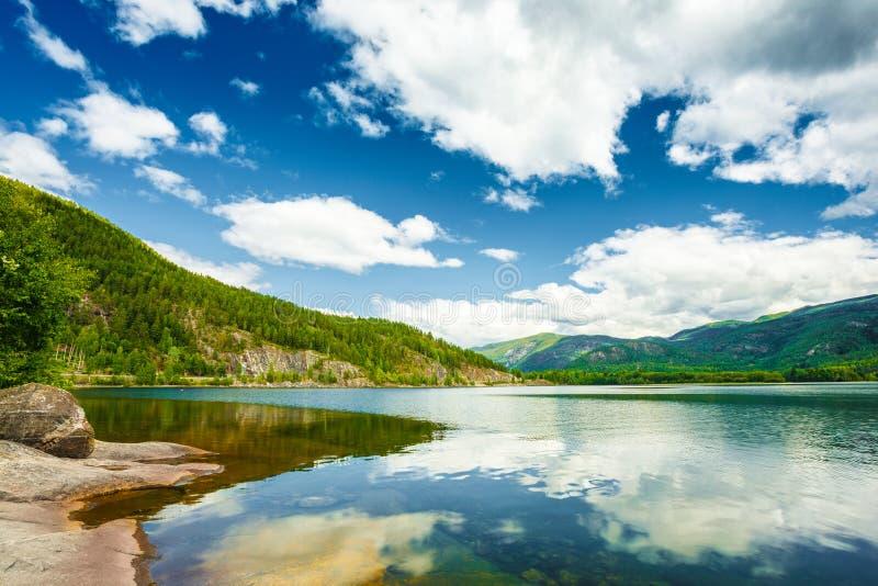 挪威自然海湾,夏季风景与 免版税库存照片