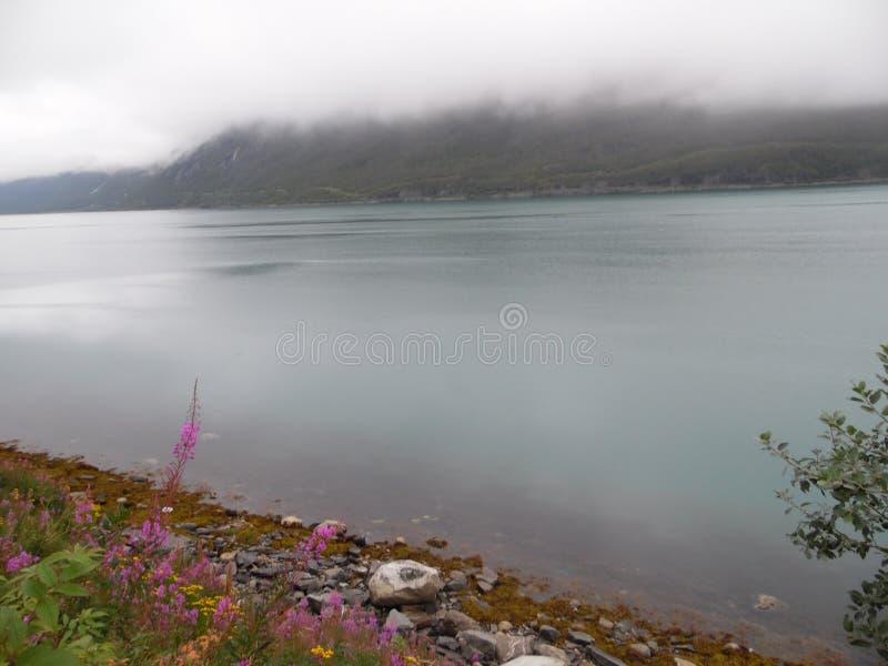 挪威视图 库存照片