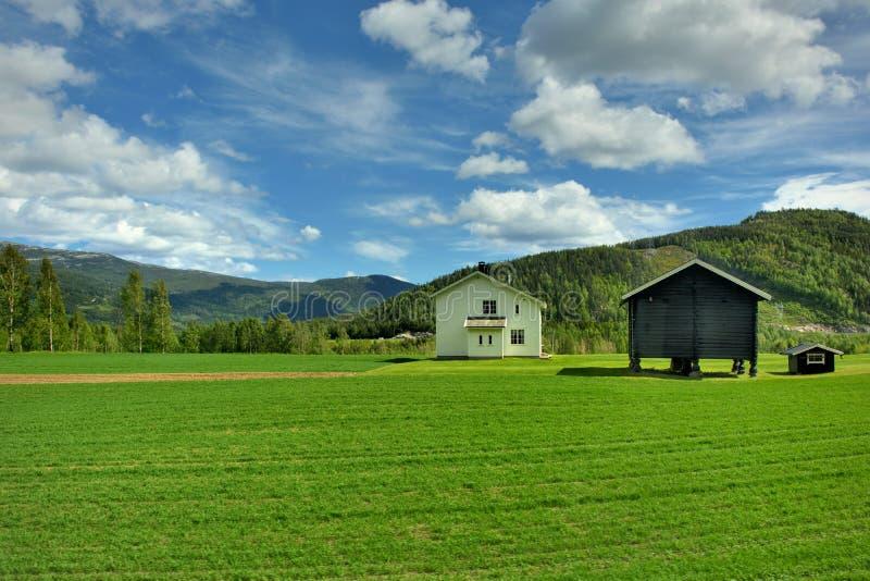 挪威镇 免版税库存图片