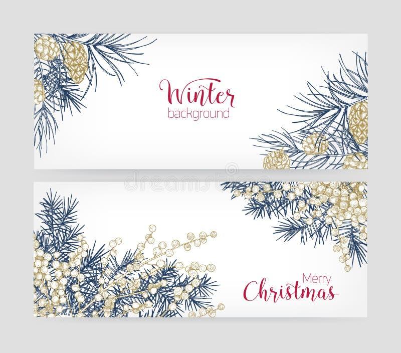 捆绑与针叶树分支的水平的植物的背景和锥体、杜松子和圣诞快乐 皇族释放例证