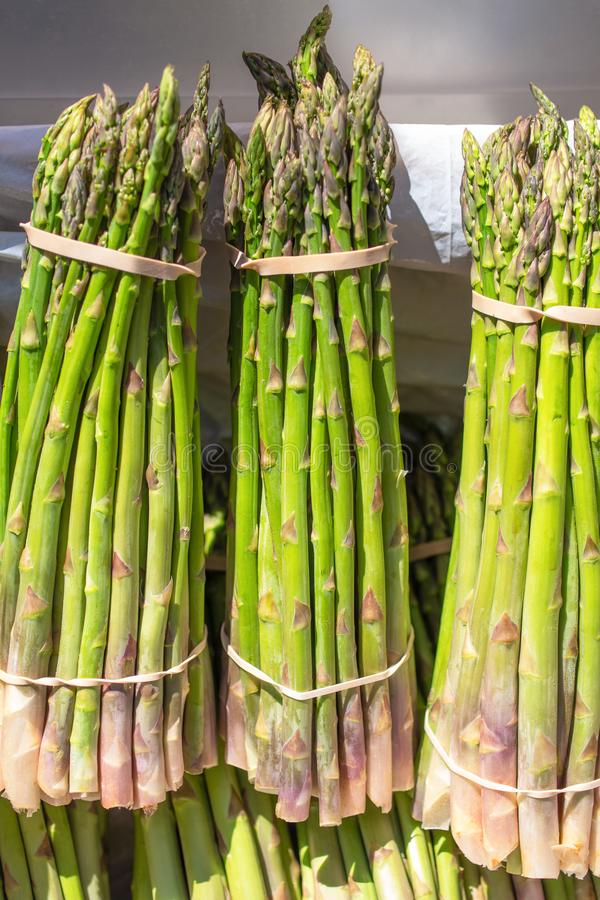 捆绑耕种的芦笋 免版税库存图片