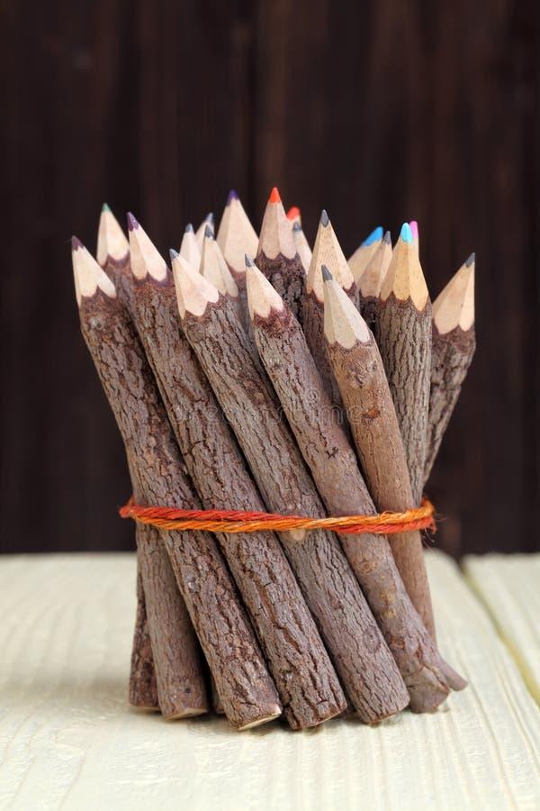 捆绑树干铅笔 免版税库存照片