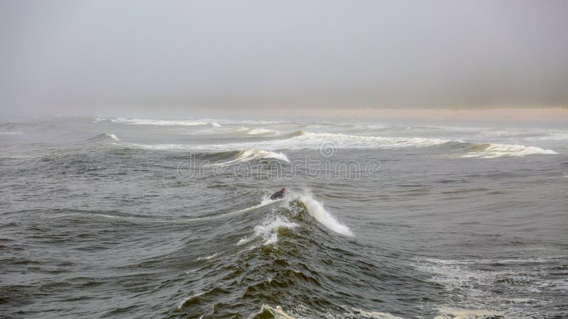 捉住波浪的孤独的冲浪者在一冷的阴沉的天 库存照片