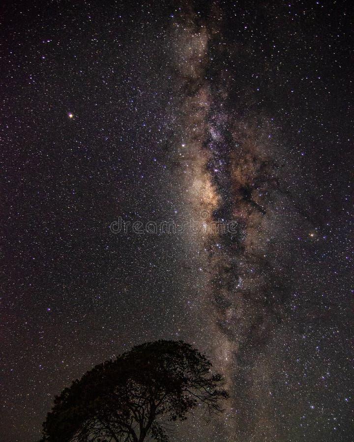 捉住的Milkyway在晚上 免版税图库摄影