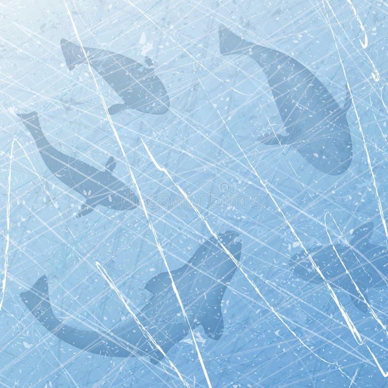 捕鱼冰谎言捕捉冬天zander 冰渔 与鱼的冬天背景 鱼集合 冰表面纹理  顶上的视图 向量 皇族释放例证