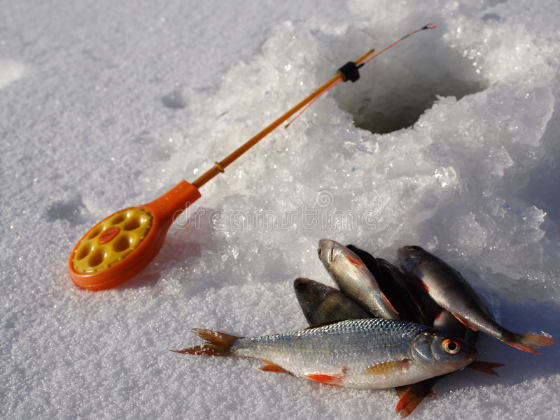 捕鱼冰 免版税库存图片