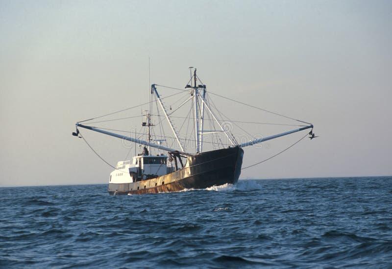 捕鱼拖网渔船 库存照片