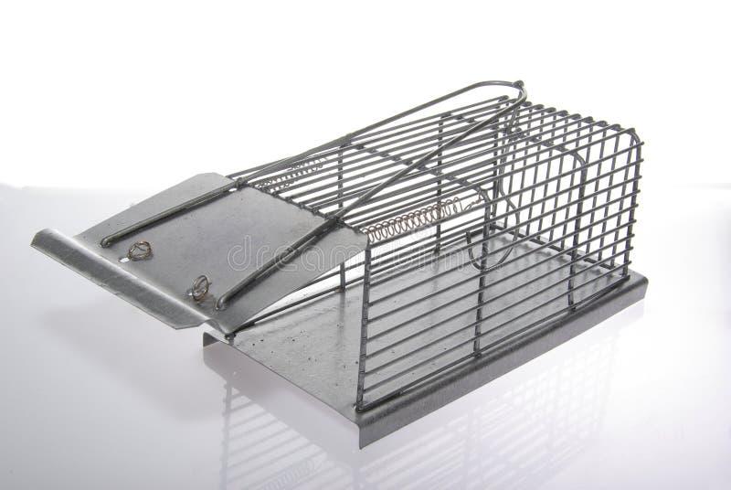 捕鼠器 库存图片