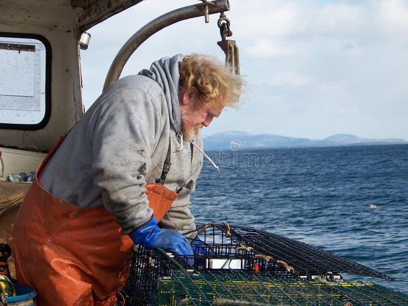 捕龙虾的渔夫 图库摄影