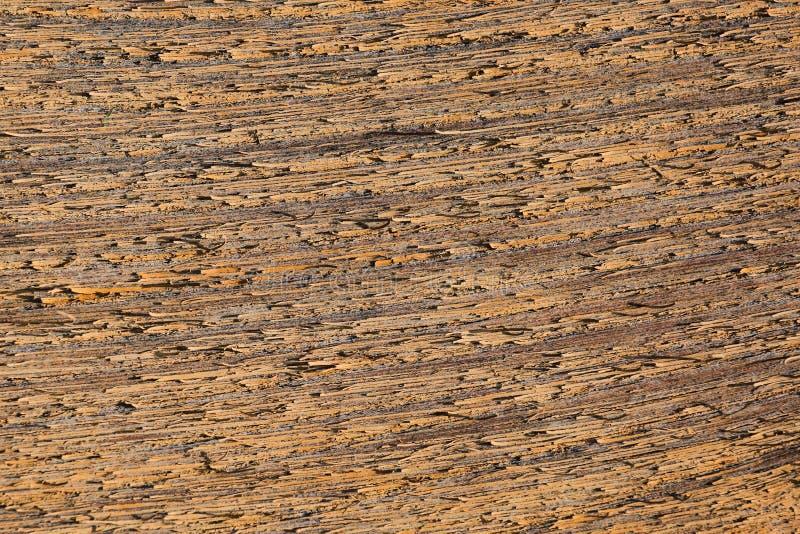 损坏和剥落切削沿木纤维的油漆在板条 免版税库存图片
