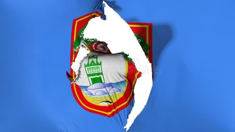 损坏的突尼斯市旗子 皇族释放例证