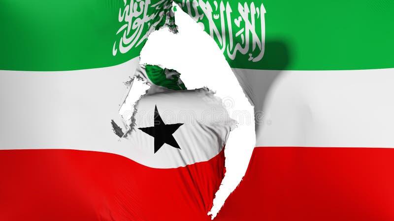损坏的索马里兰旗子 皇族释放例证